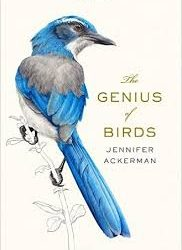 Jennifer Ackerman's new book on bird cognition, including olfactory navigation